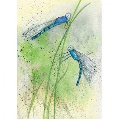 Přání v obálce Modré vážky