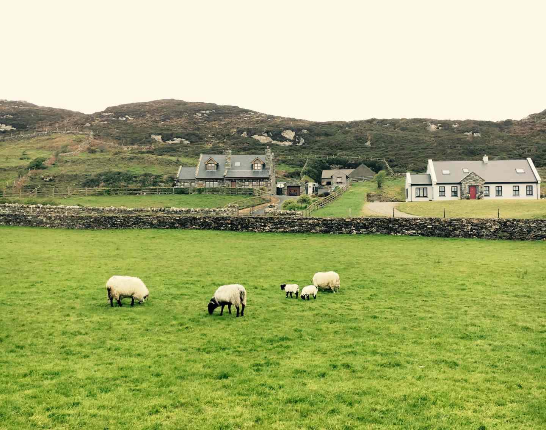 Clifden, Írsko