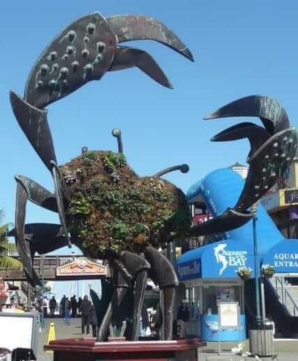 Pier 39, San Francisco, Spojené Štáty Americké, USA