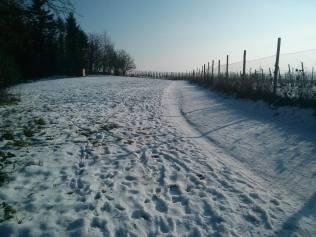 """Snowy Road To University"" Image courtesy: Karl Antony Borg"