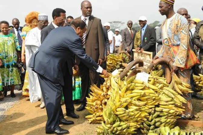 Economie : Quel est le but recherché par le rapport Moodys sur le Cameroun ?