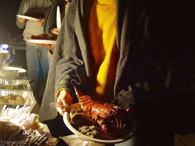 lobster / provincetown, massachusetts