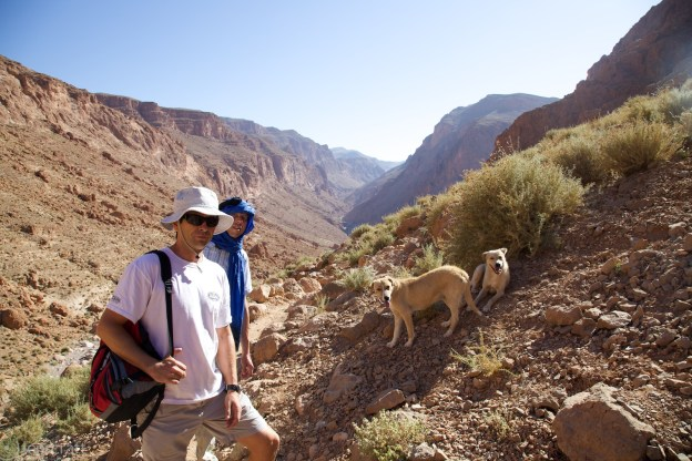 stopping to rest, with dogs / todra gorge, morocco
