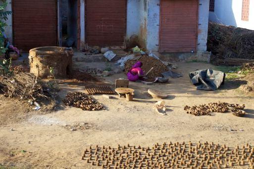 india 2010-12-22.549