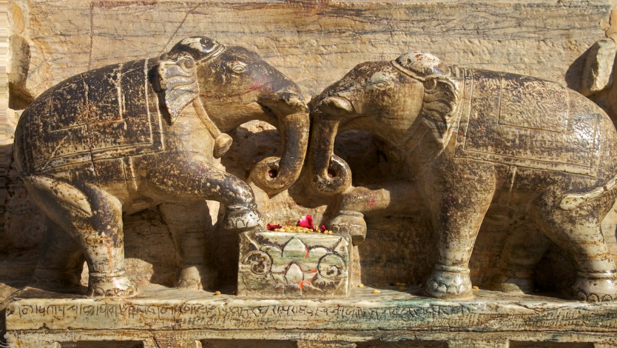 two elephants / jagadish temple, udaipur, india