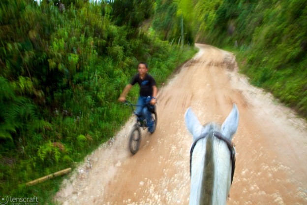 horse vs. cycle / guatapé, colombia