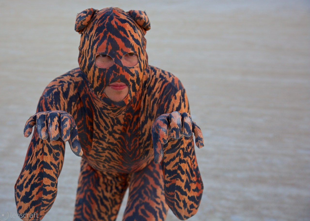 tiger tiger burning bright / black rock city, nevada