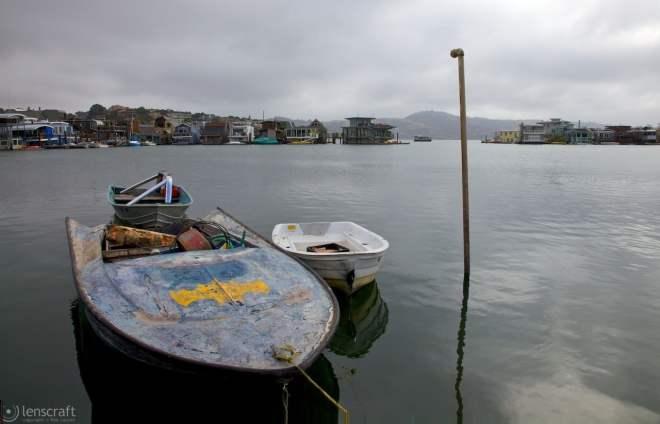 the bat boat / waldo point cooperative