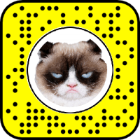 Grumpy Cat Snapchat Lens & Filter