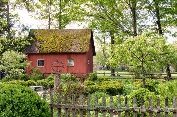 Coltsfoot Garden-3