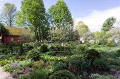 Coltsfoot Garden-6