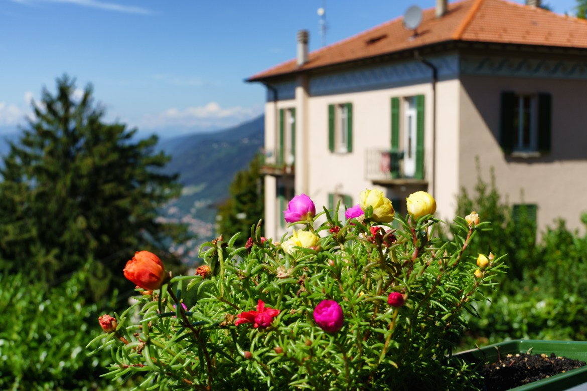 Brunate house with flowers-1