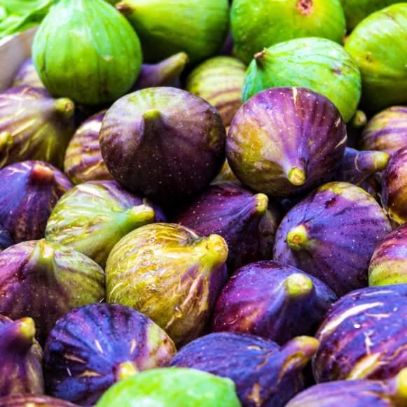 Figs in Bologna