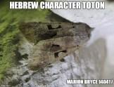 hebrew meme