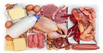 makanan hewani penambah darah