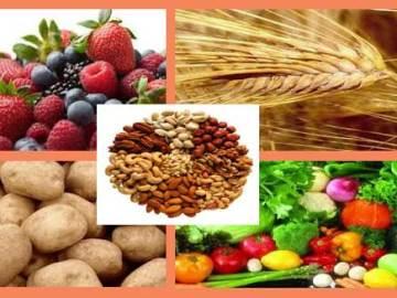 makanan nabati penambah darah
