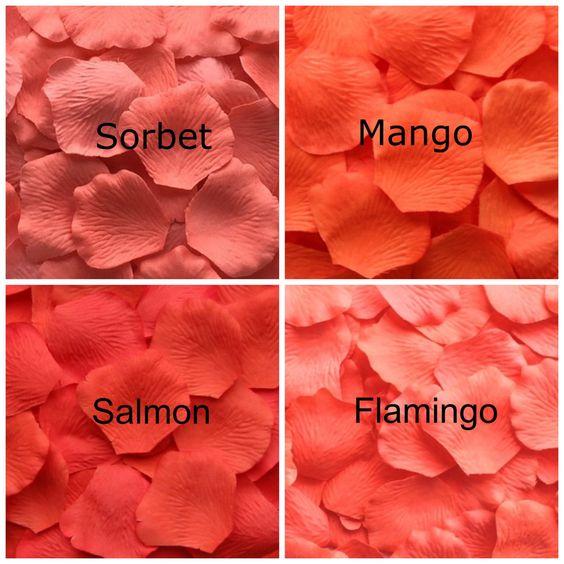 jenis warna orange