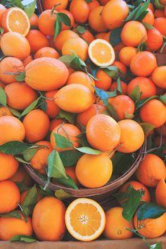 macam-macam warna orange