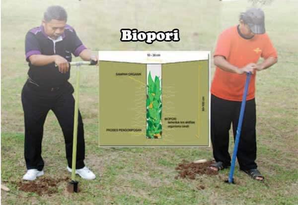 Biopori Untuk Siasati Daya Serap Air