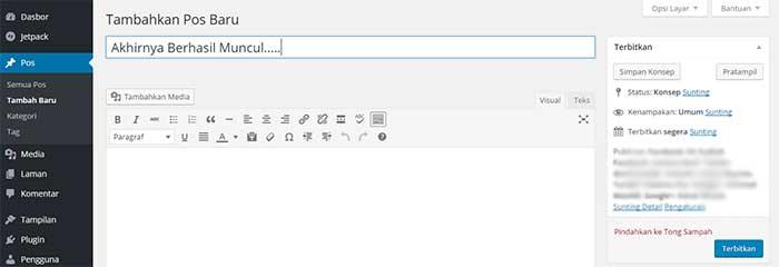 visual editor wordpress normal