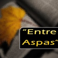 Entre Aspas - Show de Metáfora