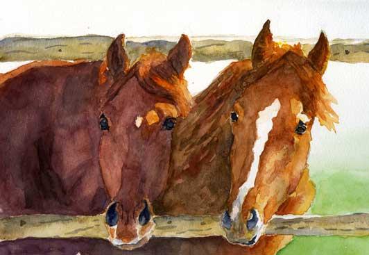 chevauxweb.jpg