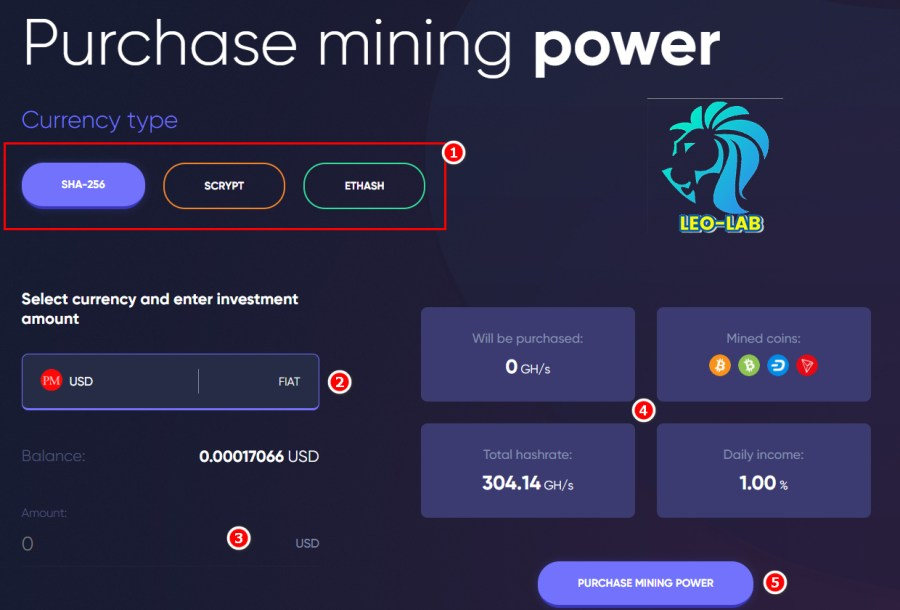 Havel Purchase mining power