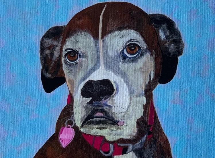 Molly Pet Portraits, Leo Art Creations