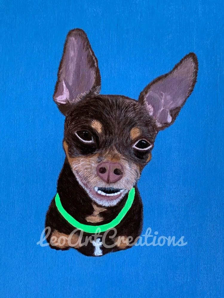 Pet Portrait Cornelio Antonio