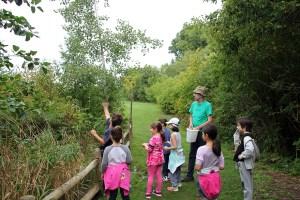 Outdoor education in Cedarvale Ravine