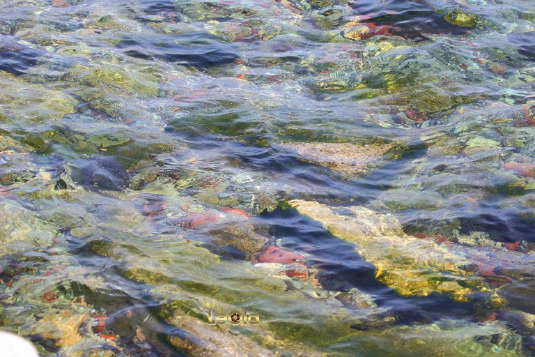 ripples-of-water-copy