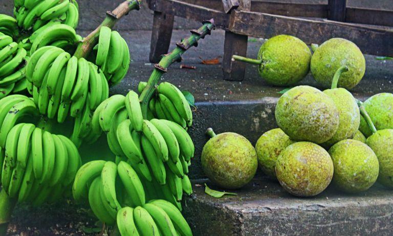 IMG_8530 Green banana & Breadfruita