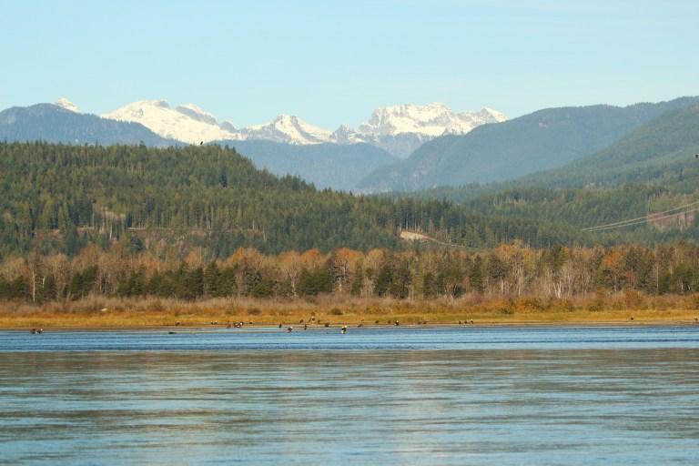 IMG_0989 Fraser River