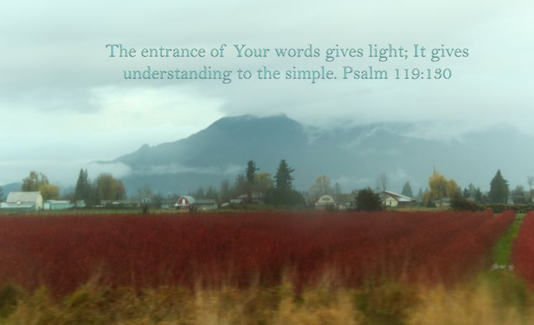 IMG_3581 Fraser Valley copy.jpg