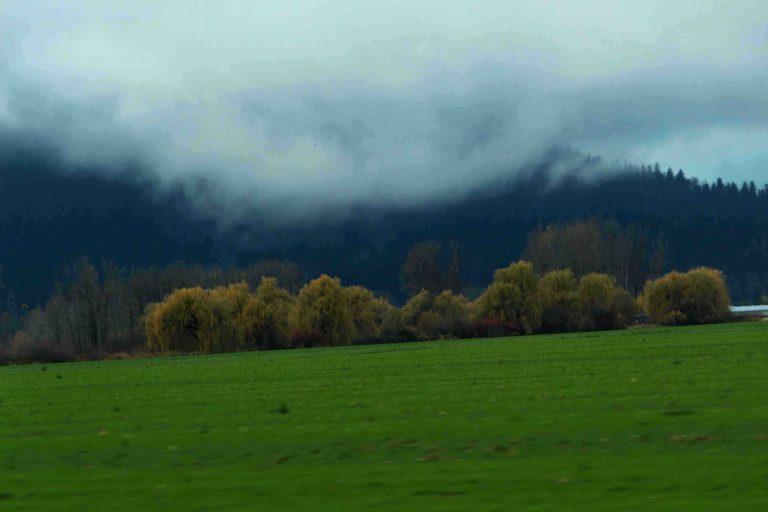 IMG_3739 Green Pastures.JPG