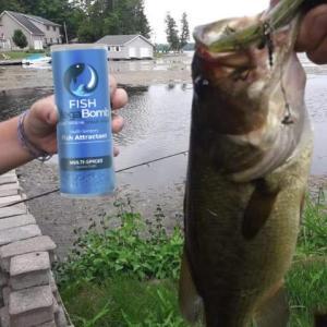 Fish MegaBomb - лучшая гранулированная приманка