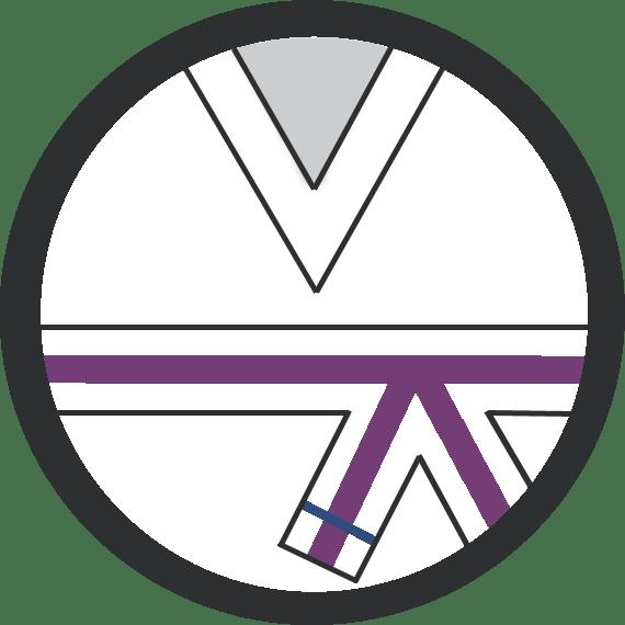 Leominster Martial Arts_Rank_Purple Middle 1 Blue Stripe