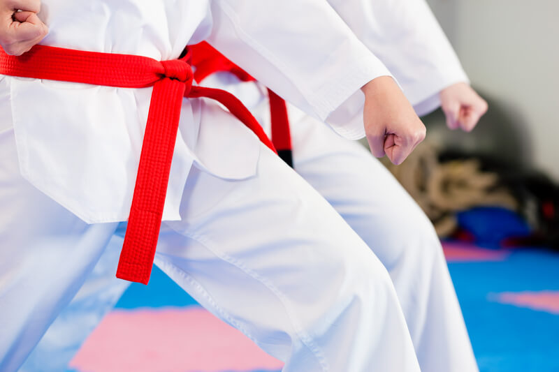 Red Belt Martial Artists in Stance