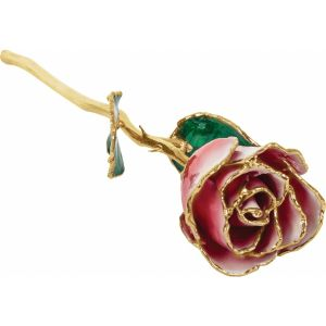 Lacquered Frozen White & Red Rose with Gold Trim from Leonard & Hazel™