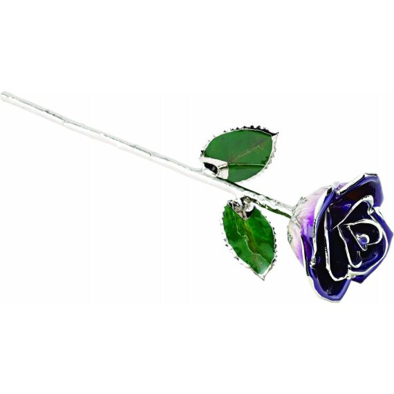 Lacquered Purple Rose With Platinum Trim from Leonard & Hazel™