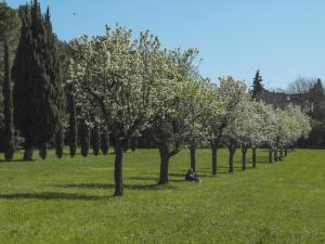Tappa 1. Parco Miralfiore.