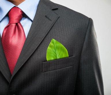 Empreendedor verde é a nova tendência do mercado | Diário de Olímpia