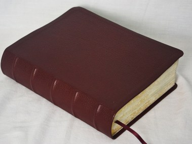 Burgundy Scapegoat Bible