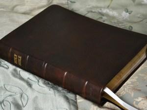 Dark Brown English Calfskin Bible (American West II)