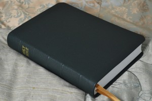 Forest Pebble Grain Cowhide Bible