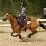 Rockin Horse Riding Association Western Show Bonfield Sunday 10th July Leonierobertsphotography