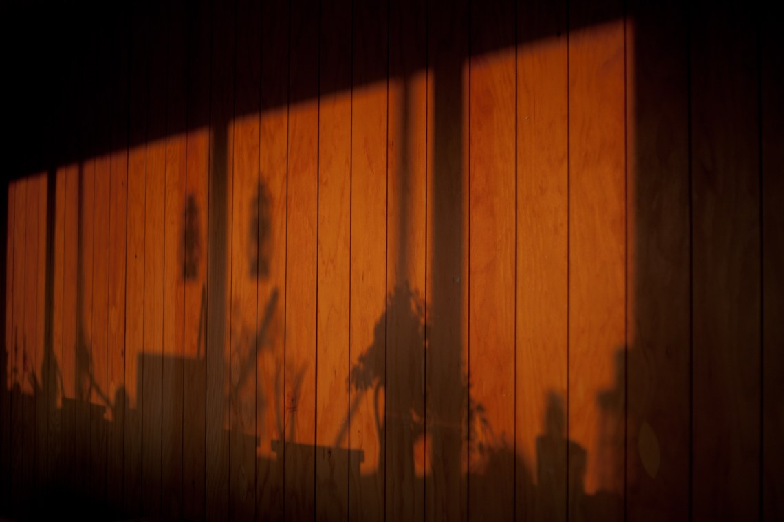 Shadows on the wall. By Leonie Wise