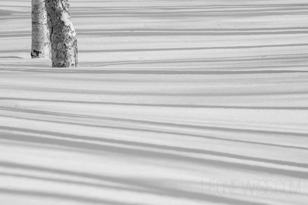 shadows-and-horizons-102