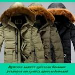 Мужские зимние пуховики больших размеров от лучших производителей