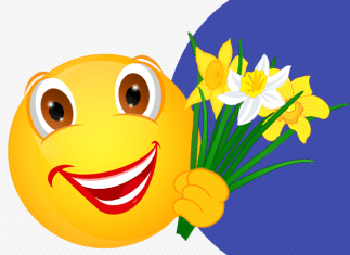 Smiley – Narzissen